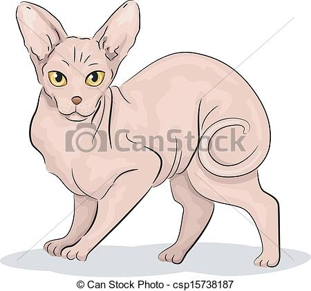 Sphynx Cat clipart Its of of Sphynx Cat