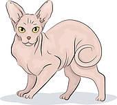 Sphynx Cat clipart Download clipart Cat clipart Cat