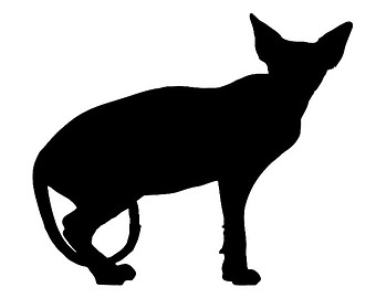 Sphynx clipart Cat Sphynx Download clipart Cat