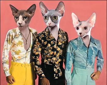 Sphynx Cat clipart Media Disco cat cards media