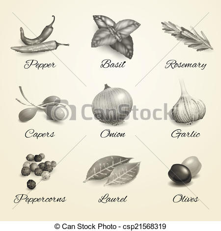 Spices clipart black and white Spices white black csp21568319 Art