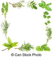 Spices clipart border Leaves Organic Organic bay 420