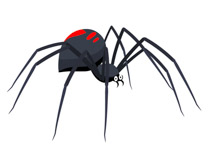 Black Widow clipart animated Art Clipart insect Kb Graphics
