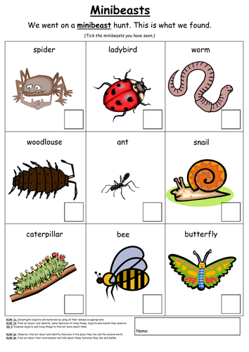 Caterpillar clipart minibeast Minibeasts toty Resources Tes by