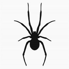 Shadow clipart spider #10
