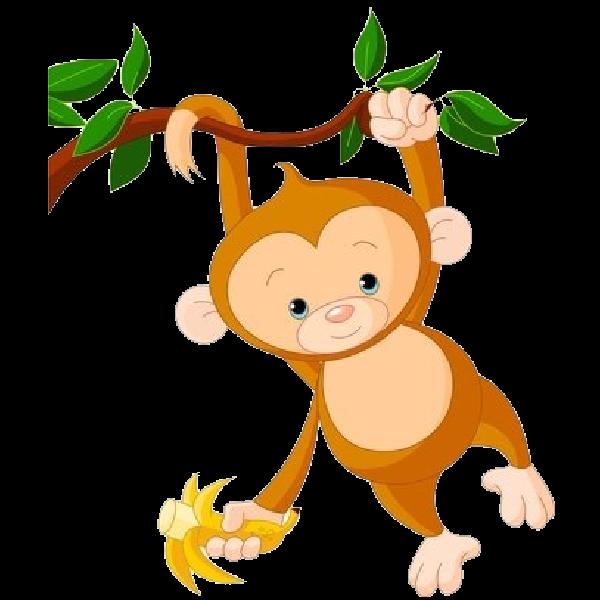 Tamarin clipart Monkey Bay Baby Clipart Monkey