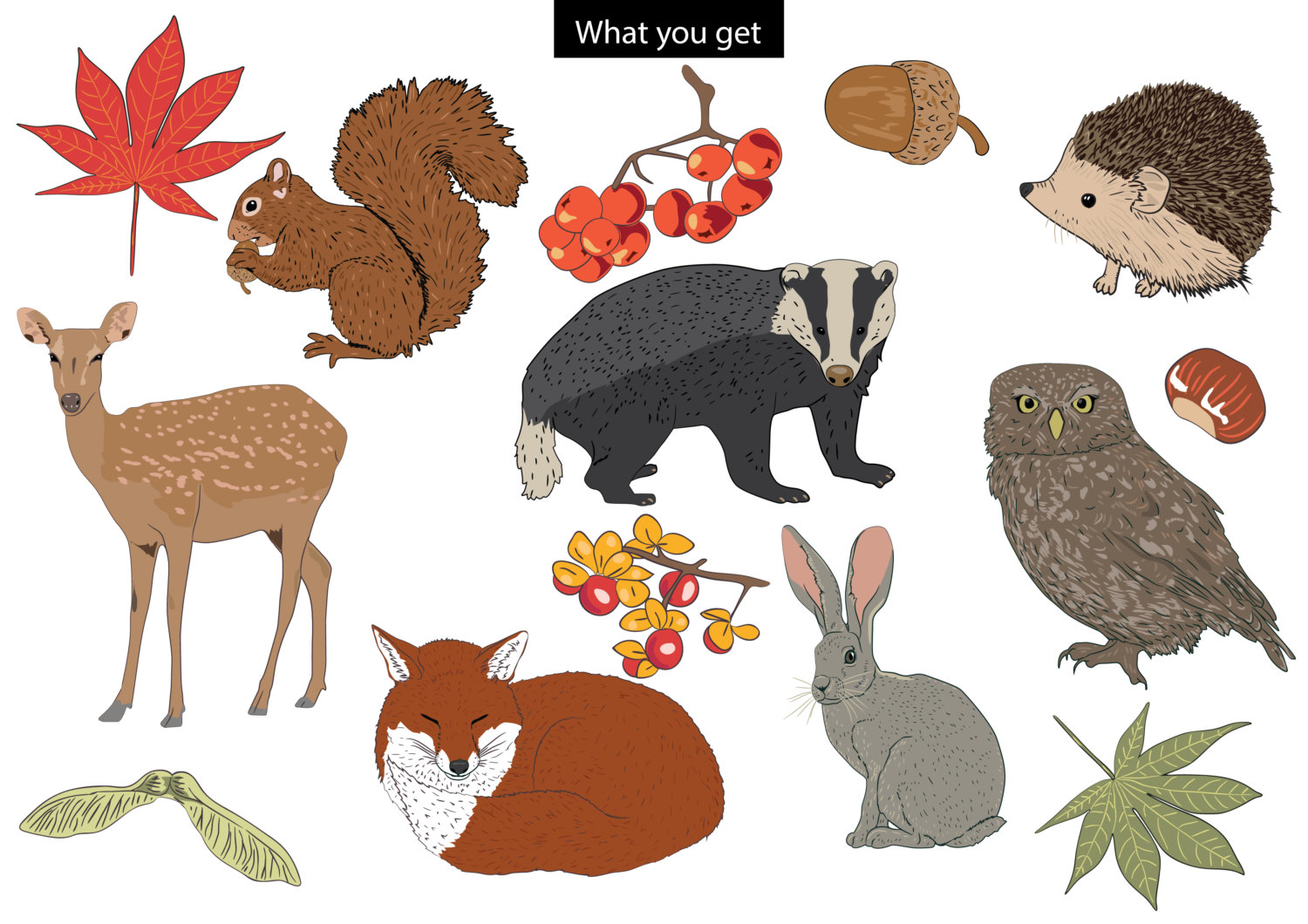 Spiderman clipart svgz Set This animals set is