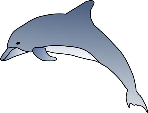 Spinner Dolphin clipart  Dolphin) of Dolphin) Illustration