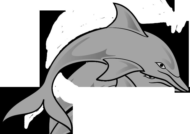 Spinner Dolphin clipart Black Clipart Panda White Free
