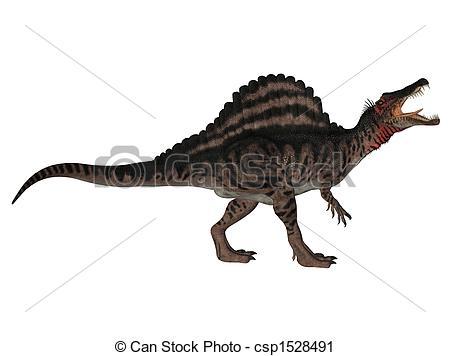 Spinosaurus clipart Spinosaurus csp1528491 Clipart white dinosaur