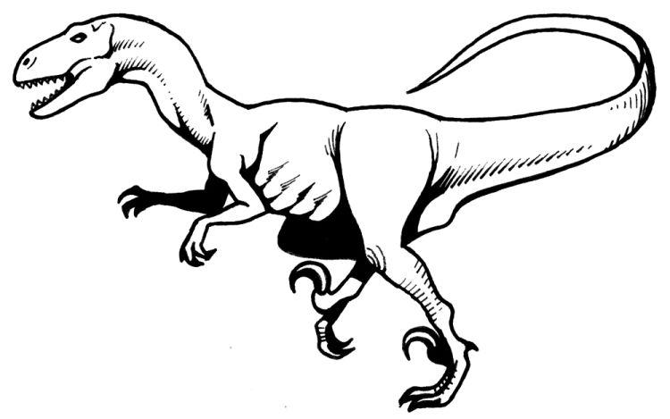 Velociraptor clipart Black Dinosaurs velociraptor (77+) White