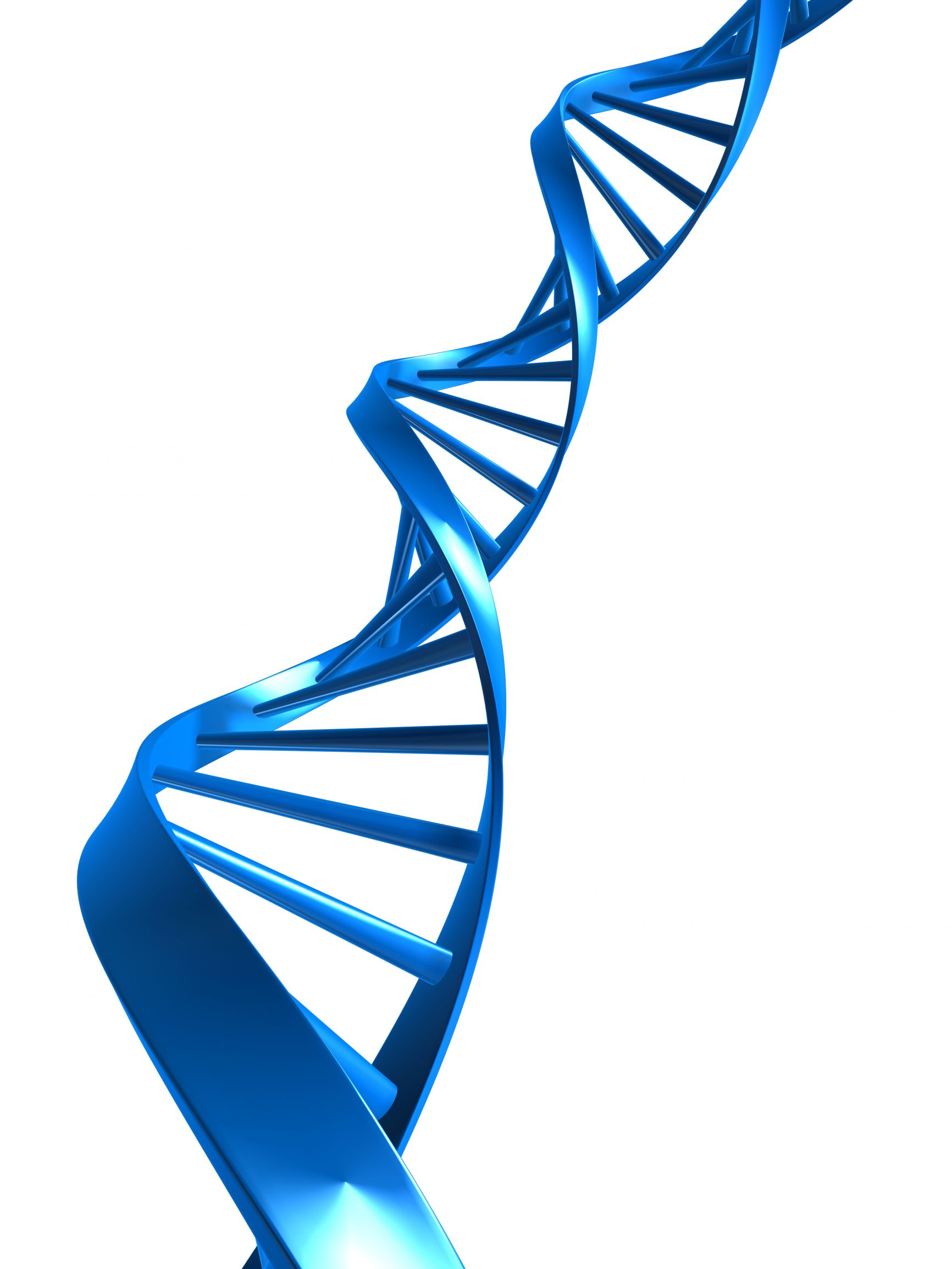 3D clipart dna Double Clip Png Free Clipart