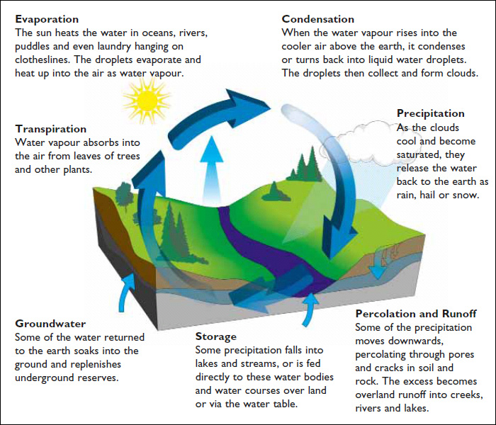 Splash clipart stormwater Management cycle Hydrologic Stormwater Gardens: