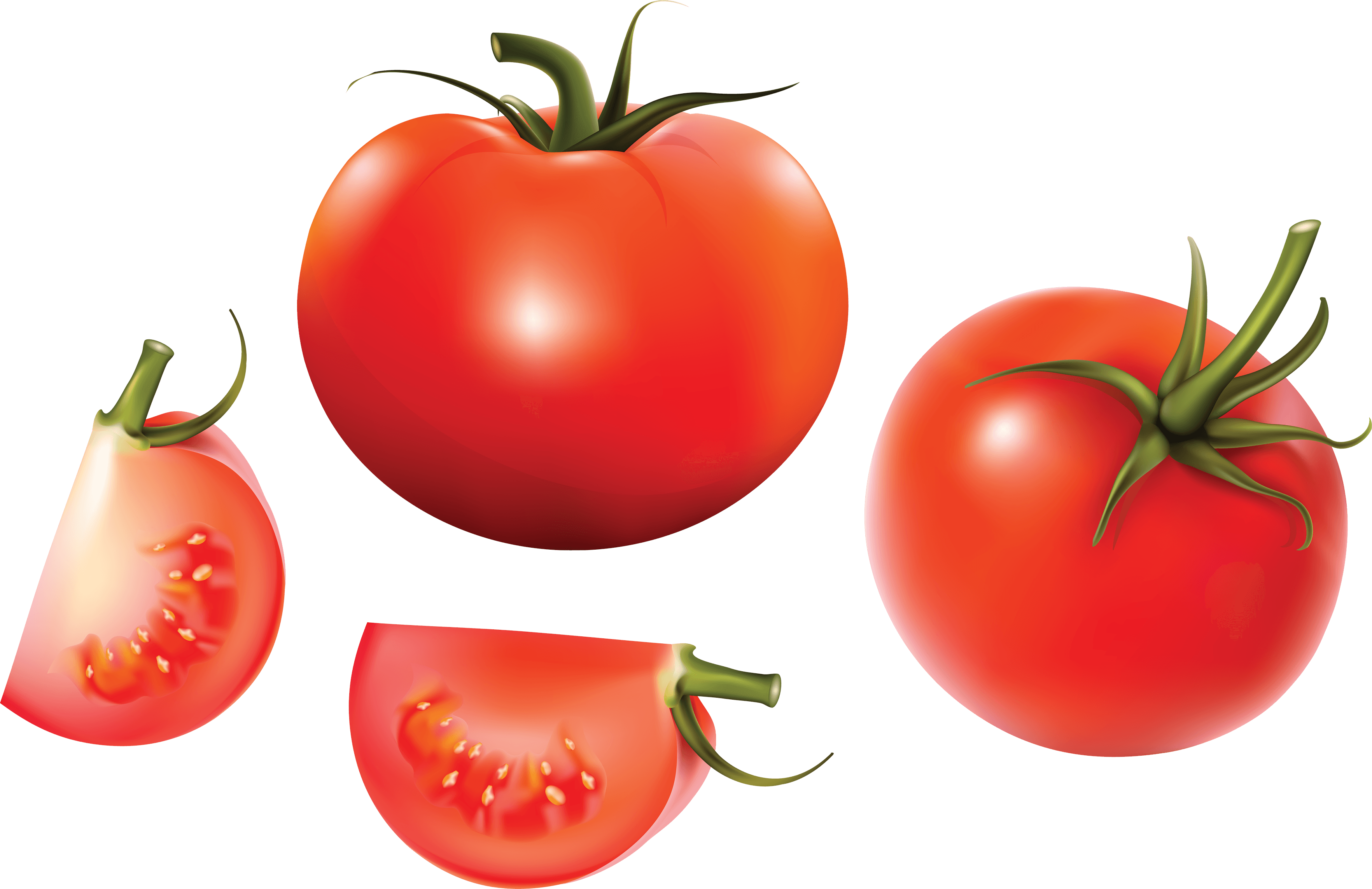 Splatter clipart tomato Image and Tomato Image images