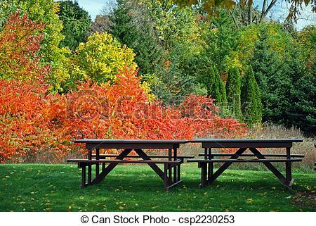 Splendor clipart Splendor tables csp2230253 a picnic