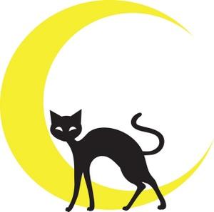 Spooky clipart crescent moon Black Black cat cat and