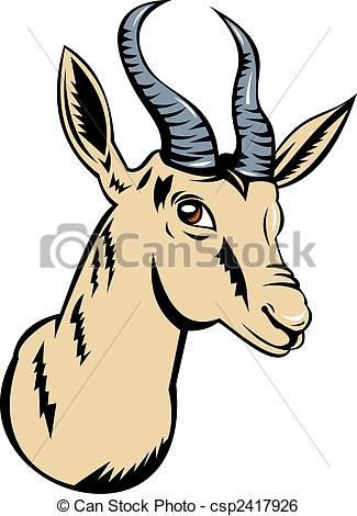 Springbok clipart Head isolated  Illustrations a