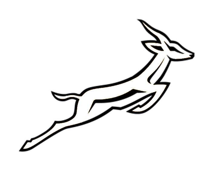 Springbok clipart #15 Springbok Springbok Springbok drawings
