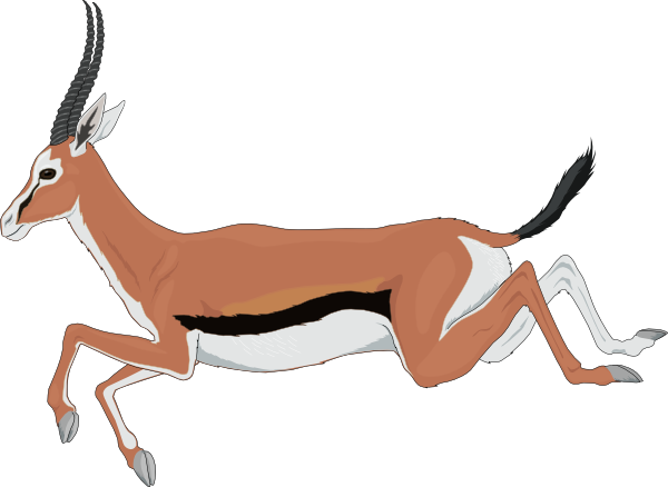 Antelope clipart cartoon Download Antelope drawings clipart #11
