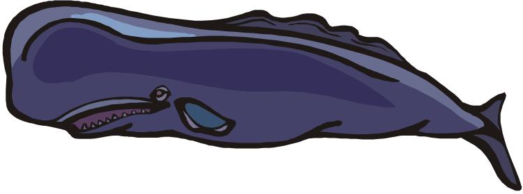 Square clipart whale Headed Whale Square Clipart Whale