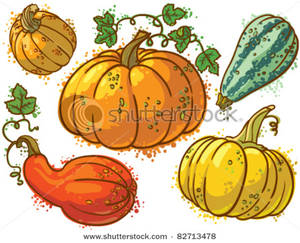 Squash clipart Collection free clipart A Image: