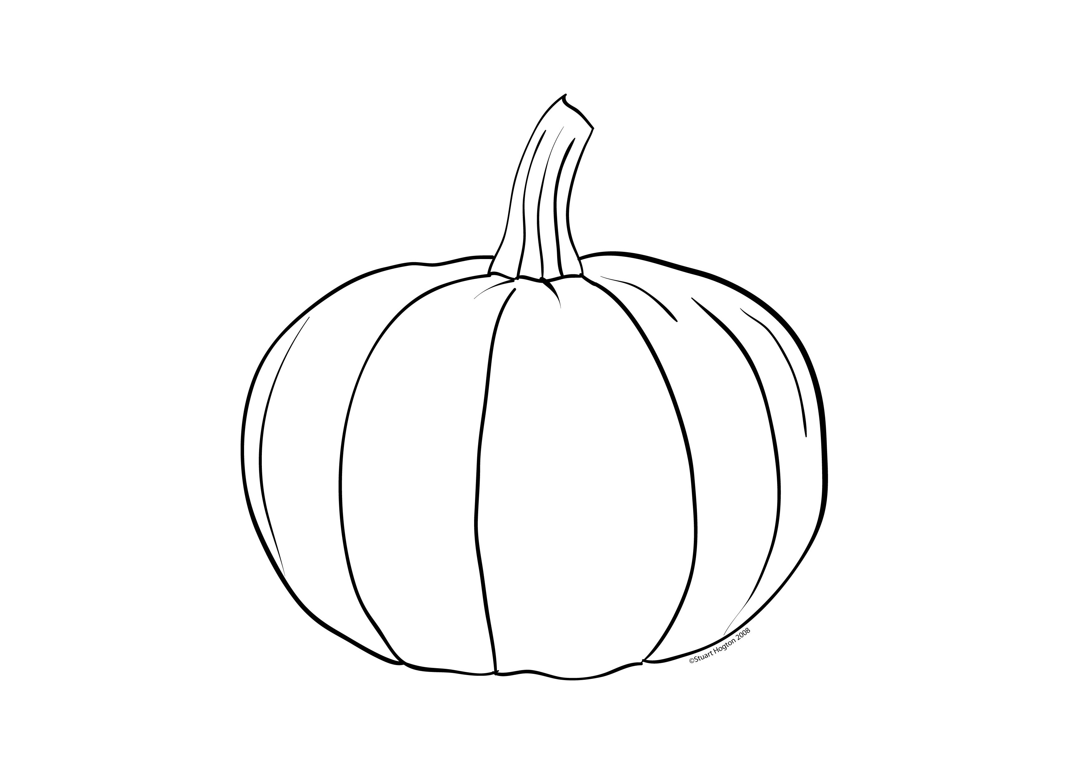 Drawn pumpkin line drawing Fall Turquoise Pumpkin The Really