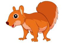 Squirrel clipart Art Squirrel Kb 101 Graphics