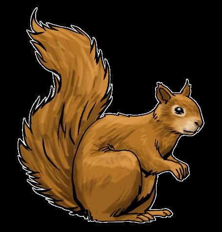 Squirrel clipart Free Public & Clip Clip