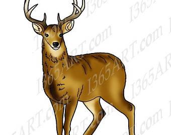 Brown clipart jellyfish Graphic Clip Squirrel Deer art