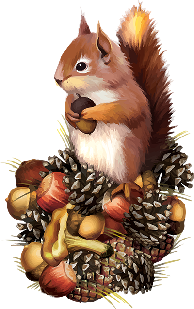 Red Squirrel clipart living thing #1