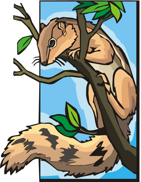 Tree clipart squirrel #10