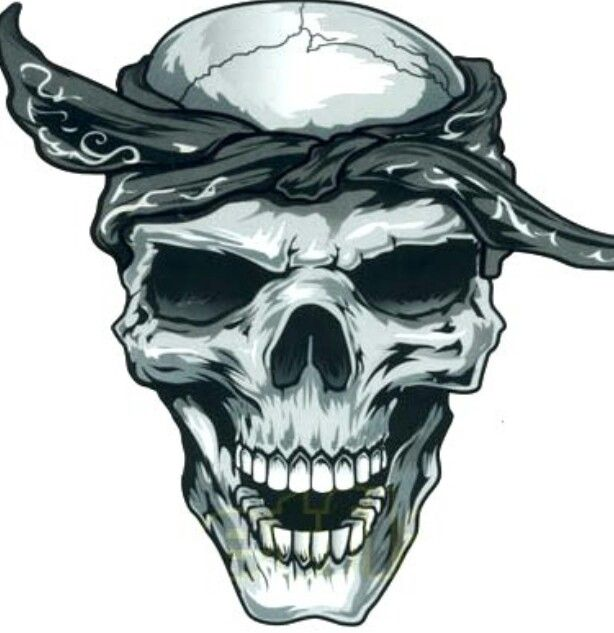 Ssckull clipart bandana About images on with 1700