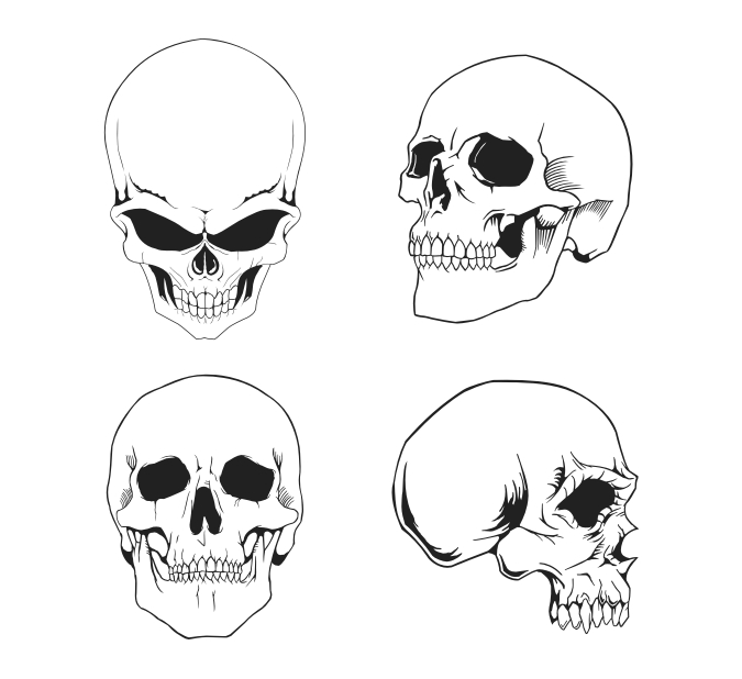 Ssckull clipart basic Skull Free Clipart Cliparts The