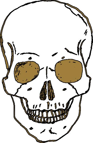 Ssckull clipart basic Gold Download vector Skull Clker