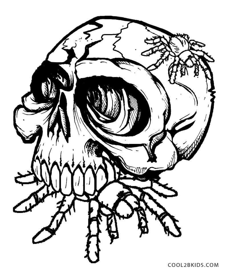Ssckull clipart coloring page Kids For Coloring Pages Cool2bKids