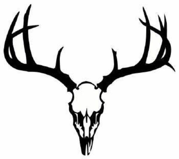 Antler clipart deer head Dear image public vector online