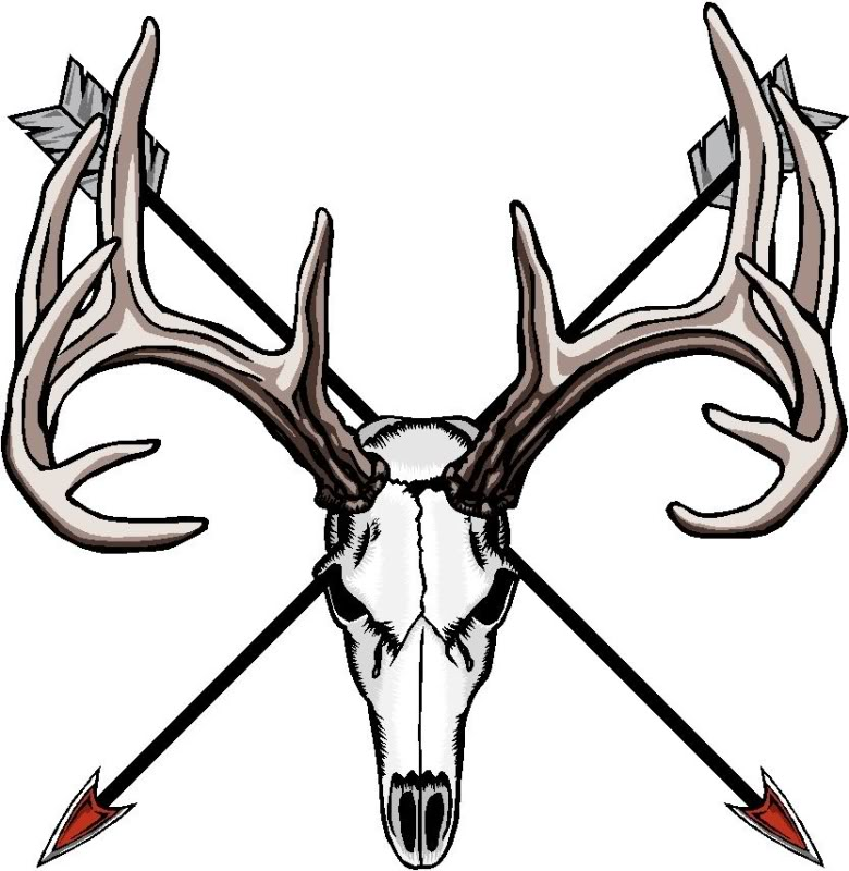 Ssckull clipart deer head On QUESTION  HIPPO Clipart