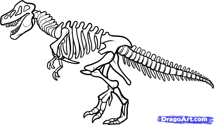Bones clipart t rex Clipart Tyrannosaurus Dinosaur Vector Collection