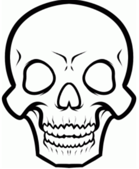 Drawn ssckull skeleton Skull Art Skull to Drawing