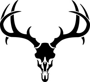 Antler clipart deer head Vector Clipart on pics and