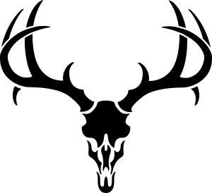 Antler clipart deer head Find more deer%20skull%20drawing Antlers pics