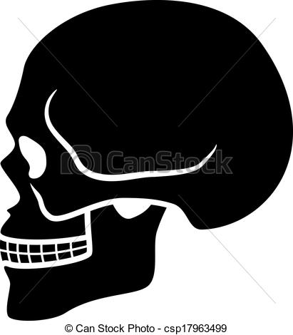 Ssckull clipart front #6