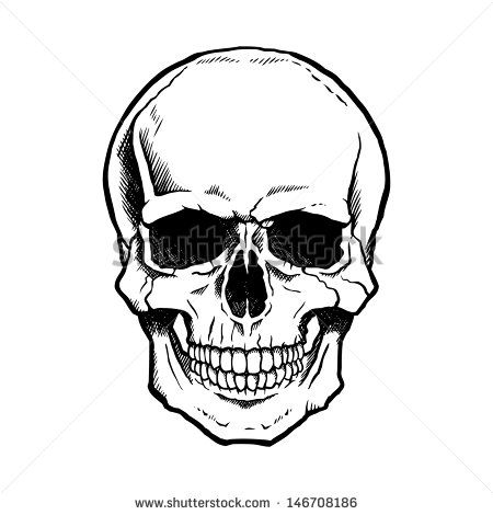 Ssckull clipart front Best human ideas and white