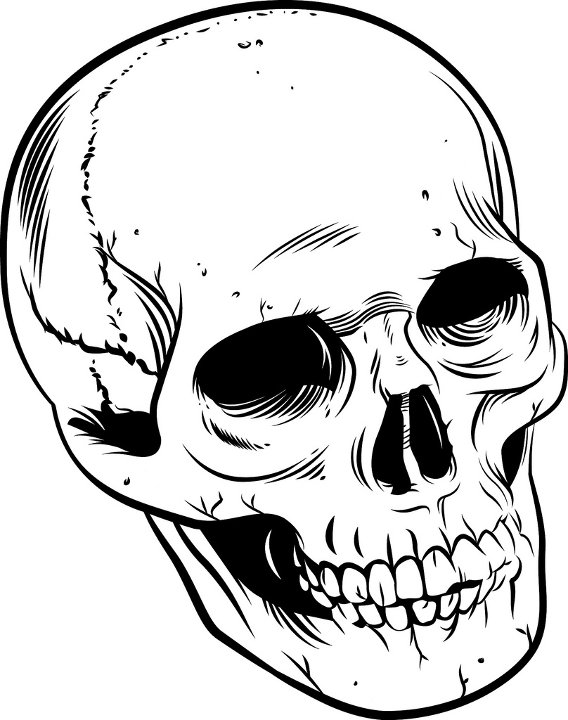 Ssckull clipart hamlet skull Skull Skull with inking Drawing
