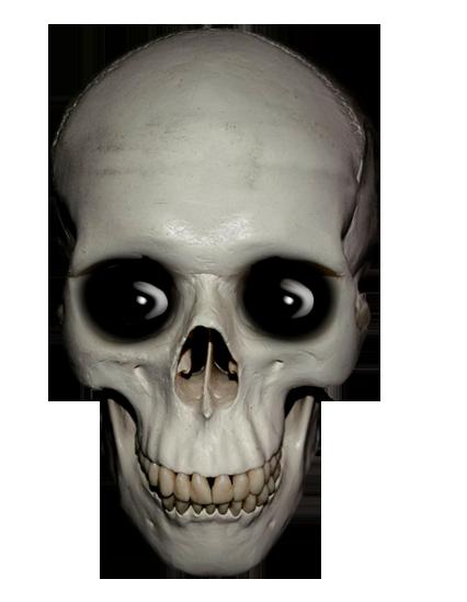 Sleleton clipart skeleton face (and Art Skull skull Funny!)
