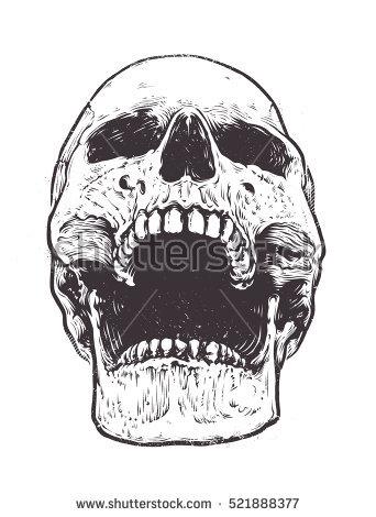 Drawn brain skull #4
