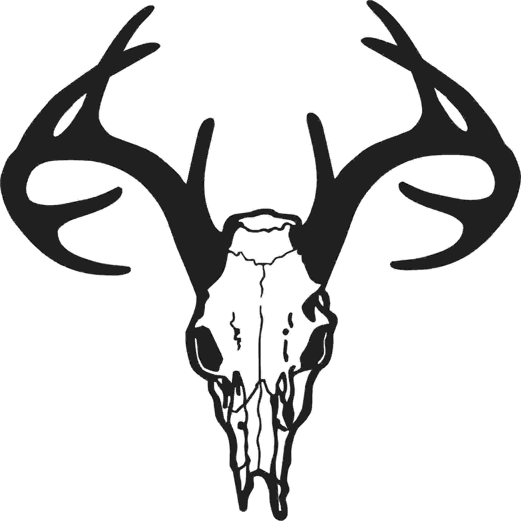 Antler clipart deer head Panda Images Skull Art Free
