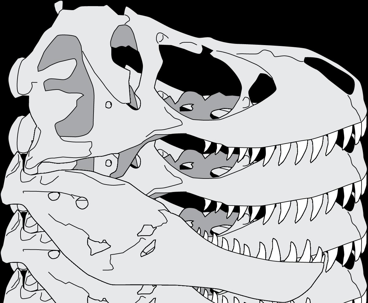 Raptor's skull rex Tyrannosaurus Nest