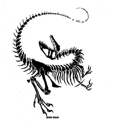 Ssckull clipart raptor Search 25+  on Pinterest