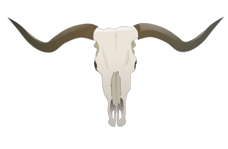 Ssckull clipart texas longhorn Longhorn Free Free Art Clip